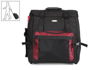 Steirische Harmonika Strasser Classic B es as mit Koffer & Riemen