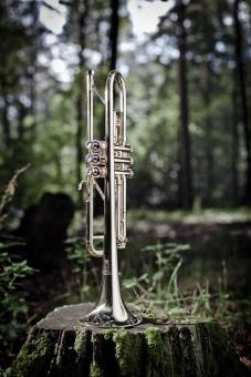 "Leon Bb Trompete 113 ""versilbert"""